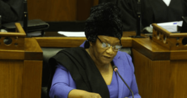 Trolls Flood S. Africa Parliament with Porn, Racist Abuse During Zoom Video Conference