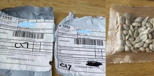 Agricultural Warfare? People Are Receiving Mysterious Unsolicited Packages Of Seeds In The Mail From China