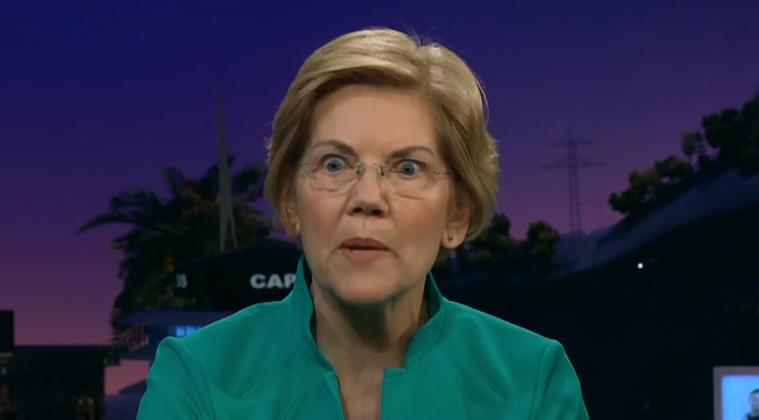 POCAHONTAS: Trump May Use Federal Forces as 'Personal Militia' to Stay in Office