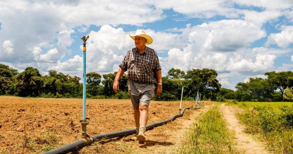 Zimbabwe Farmers