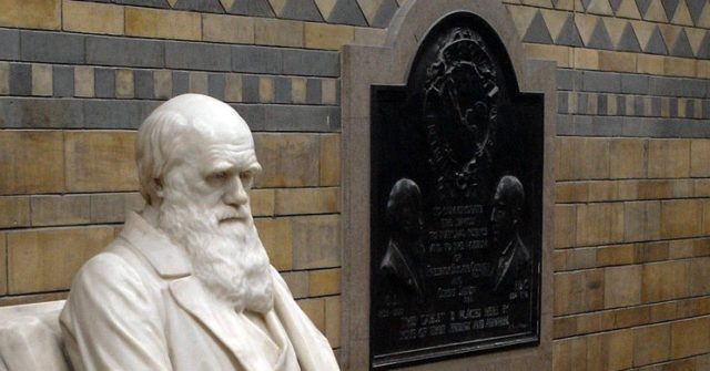 UK's Natural History Museum to Review 'Offensive' Charles Darwin Exhibits, Bowing to BLM Pressure