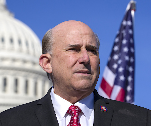 Rep. Louie Gohmert to Newsmax TV: Marchers Protested Against Stolen Election