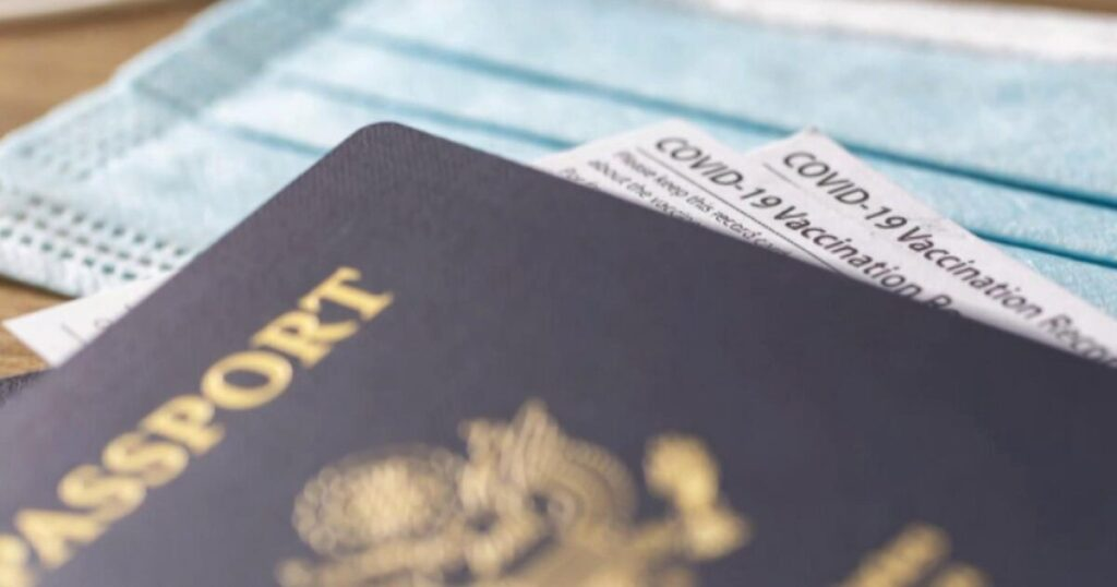 Poll Claims Nearly Half of Americans Think 'Vaccine Passports' Are A 'Good Idea'