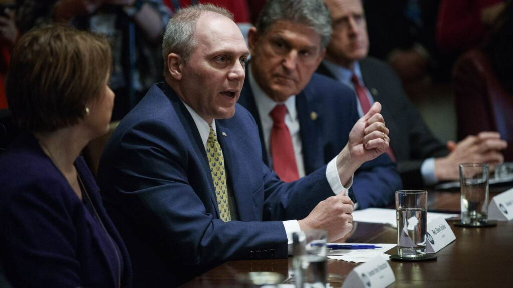 Watch: Steve Scalise Challenges Dr. Facui on Biden Administration's COVID Hypocrisy at the Border