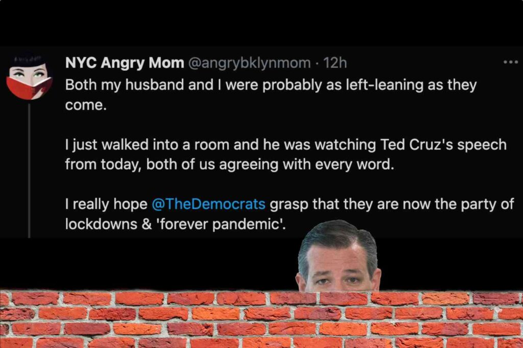 Read this amazing thread from a lefty who is so fed up with the Dems' perpetual lockdowns that she's cheering on Ted Cruz