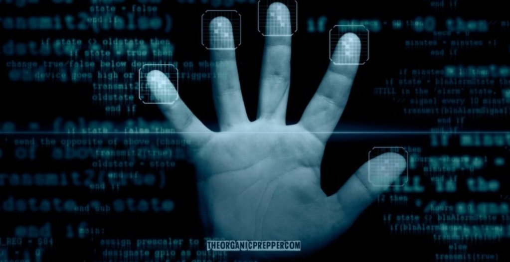 Pay-by-Palm: Just an Innocent Technology to Make Life Easier?