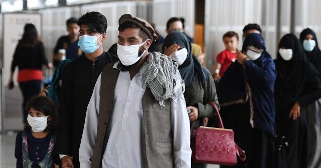 Report: Gov't Will Give Free Health Insurance, Aid to Afghan Evacuees